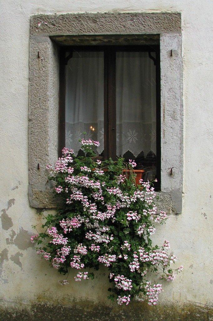 Primorsko okno