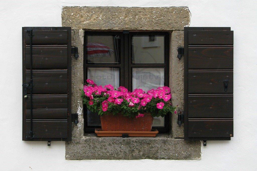 Kraško okno