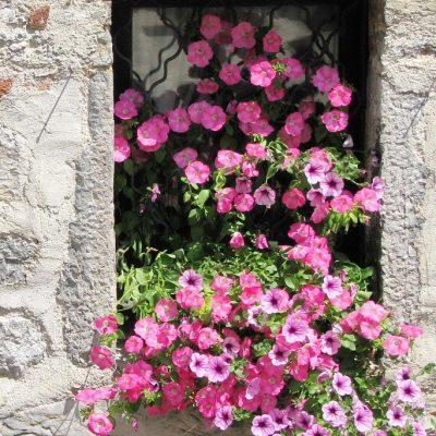 Okno mlina
