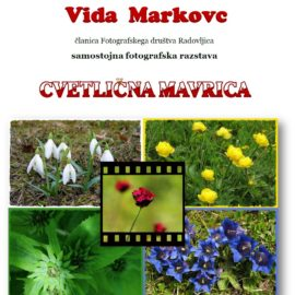Cvetlična mavrica, fotografska razstava Vide Markovc