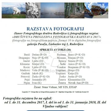 Društvena pregledna fotografska razstava 2017/1